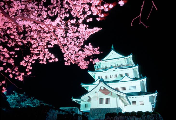 「千葉城 桜」の画像検索結果